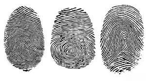 Criminal record Fingerprint